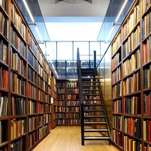 Библиотеки Городищ
