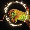 Цирки в Городищах